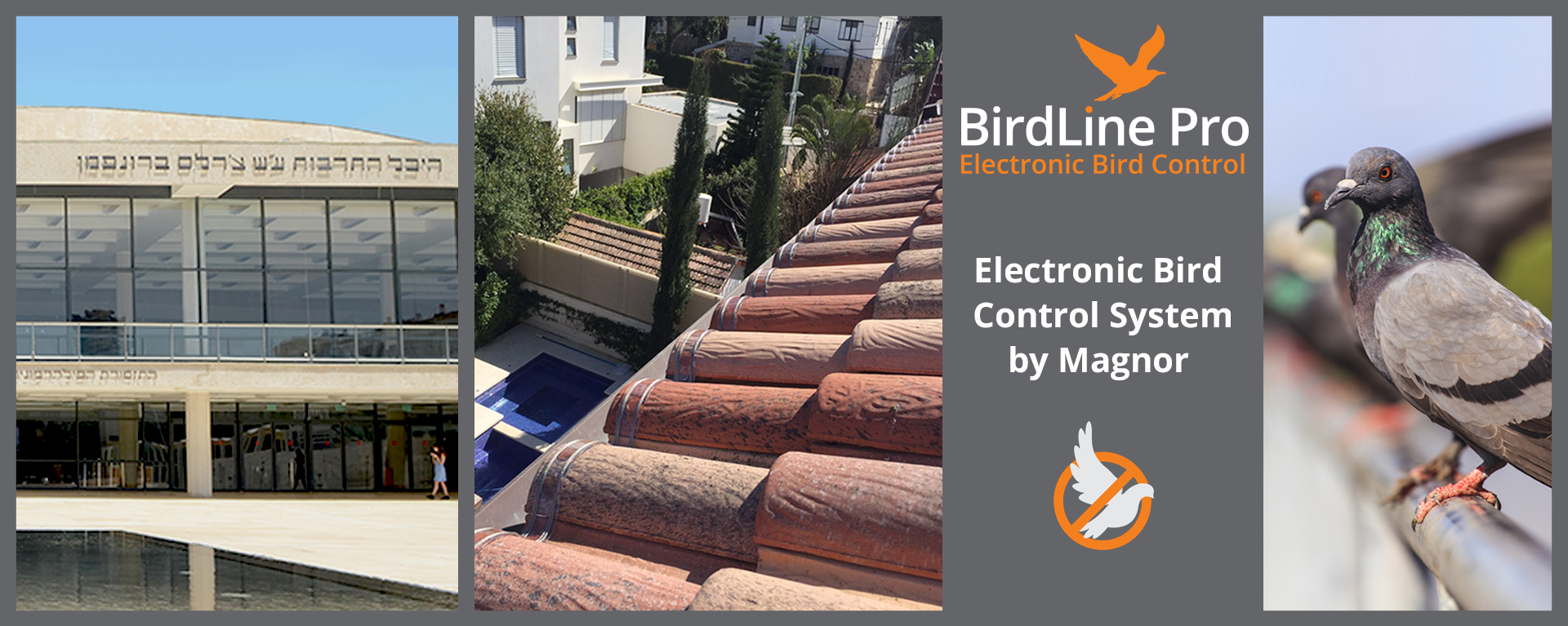Magnor_BIRD_ CONTROL_web page_FINAL_ENG